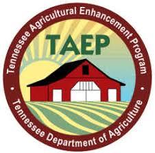 TAEP Logo
